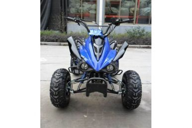 Interceptor 125cc 4 Stroke Quad Bike - Blue