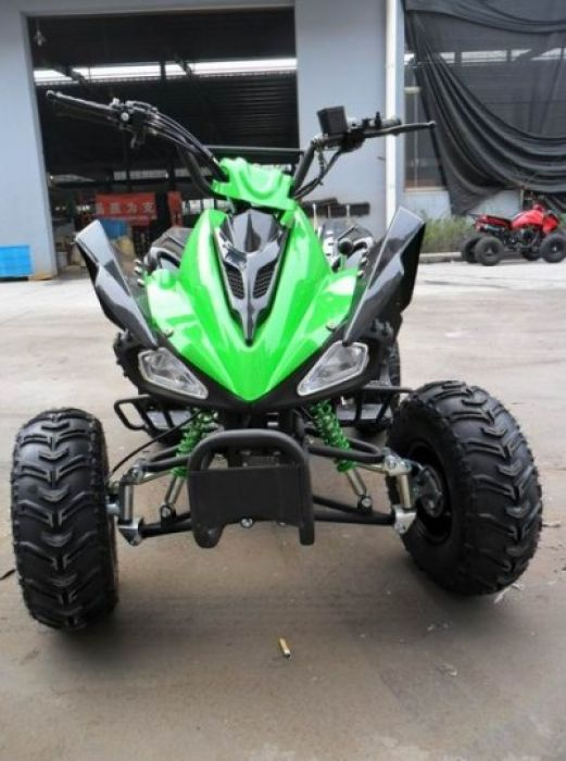 Predator 110cc 4 Stroke Quad Bike With Reverse - Green Thumnail #0