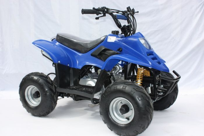 Thunder Cat 110cc 4 Stroke Quad Bike - Blue Thumnail #0