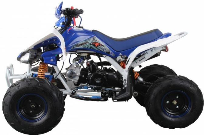 Interceptor 125cc 4 Stroke Quad Bike - Blue Thumnail #1