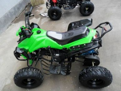 Predator 110cc 4 Stroke Quad Bike With Reverse - Green